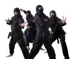 ninja overload
